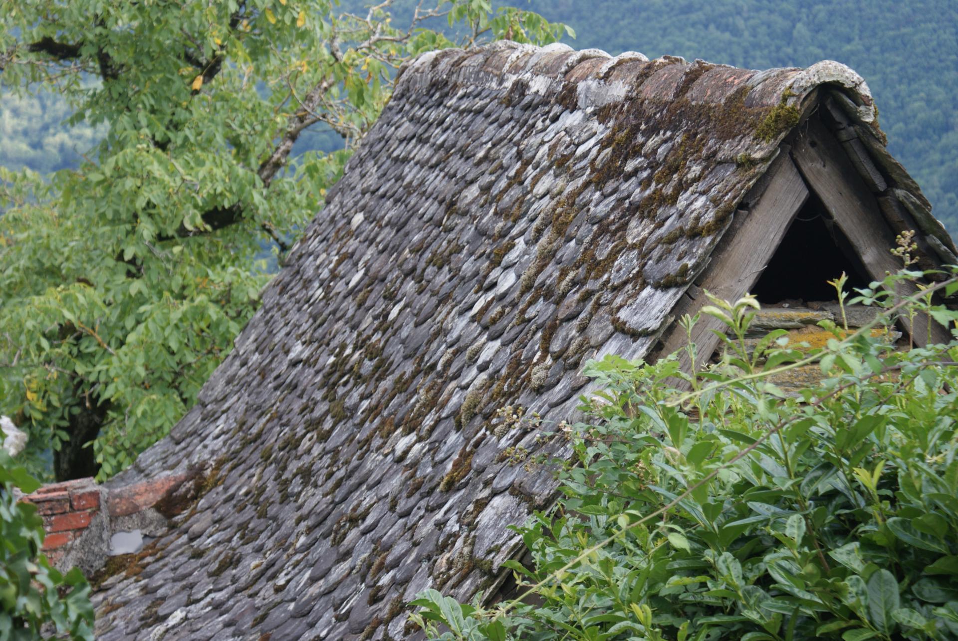 Les toits de la Châtaigneraie
