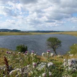 Le lac de Saint Andéol en Aubrac