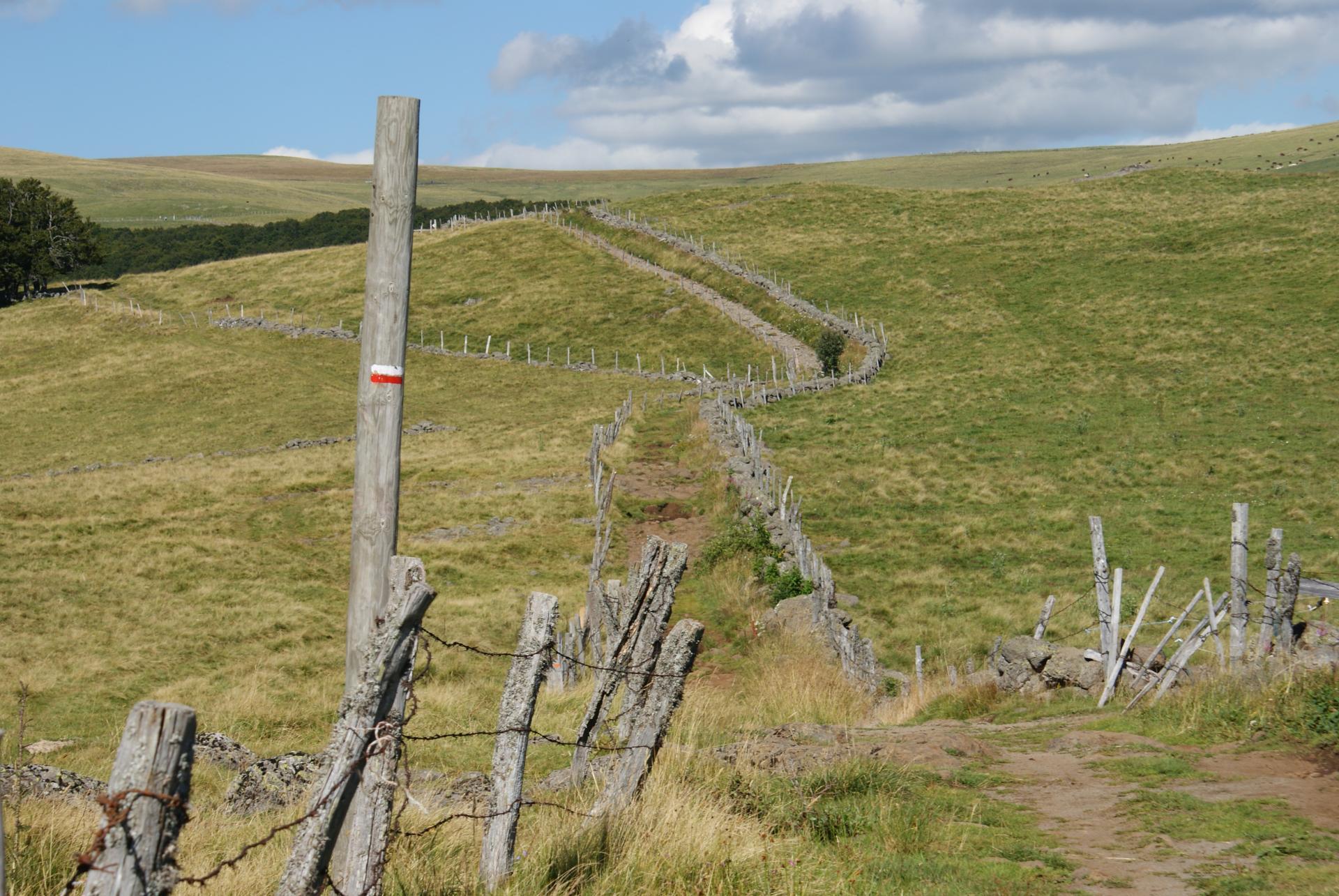Sentier vers le Plomb du Cantal